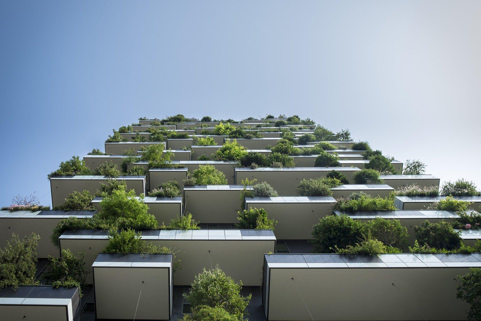 ייעוץ לבנייה ירוקה